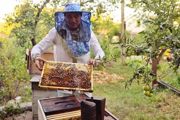 Um abelheiro masculino tira da colméia ou apiário o quadro para as abelhas