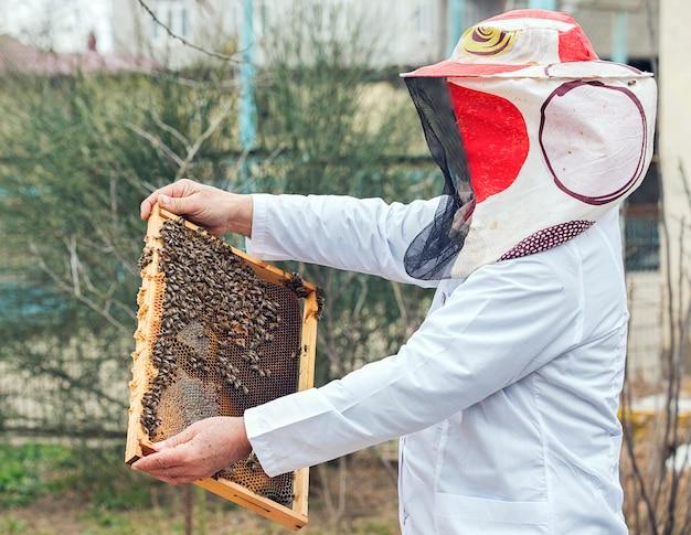 Um apicultor em uniforme de trabalhador branco colocando colméia com mel e um monte de abelhas nele.