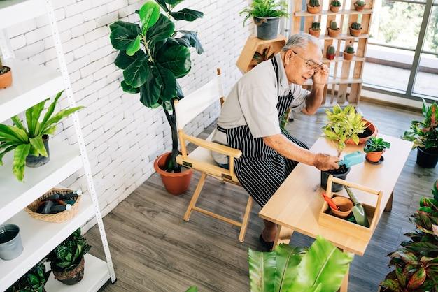 Um avô asiático adora cuidar das plantas, ajustar os óculos para ver detalhes das plantas em um jardim interno da casa com alegria.