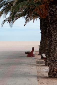 Um banco perto de uma praia