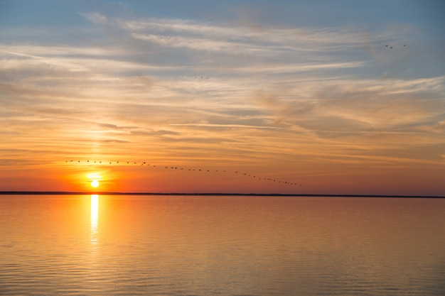 Um bando de pássaros voa para o inverno ao pôr do sol. belo pôr do sol dourado no mar, céu azul e sol laranja.