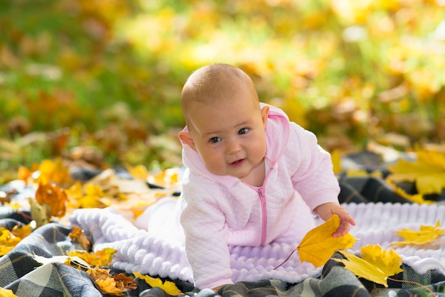 Um bebê aprendendo a engatinhar em um tapete de piquenique entre as folhas de outono em uma cena brilhante de parque de outono.