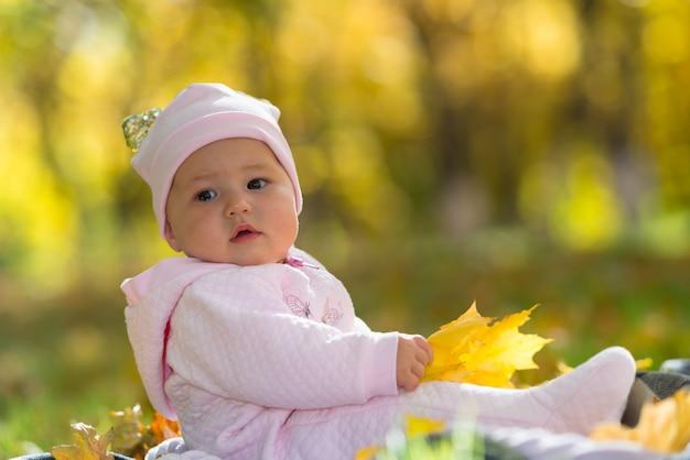 Um bebê com roupas rosa sentado entre o outono amarelo, folhas caem em uma cena do parque.