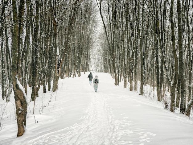 Um beco em uma floresta de inverno coberta de neve com pessoas caminhando ao longe