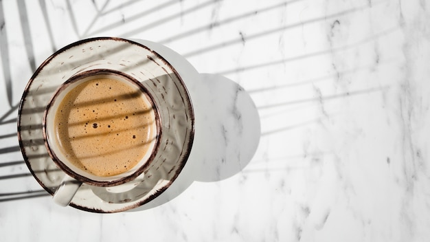 Um branco cheio de xícara de café em um fundo branco coberto por uma sombra de folha de ficus