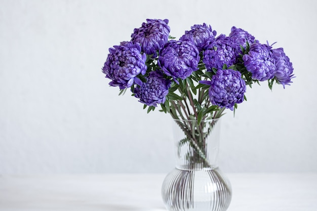 Um buquê de crisântemos azuis em um vaso de vidro em um fundo branco, copie o espaço.