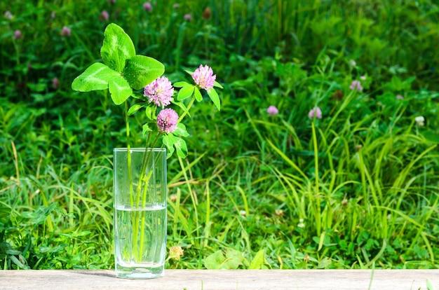 Um buquê de flores de trevo com uma folha de quatro folhas em um copo sobre uma superfície de madeira. foco seletivo.