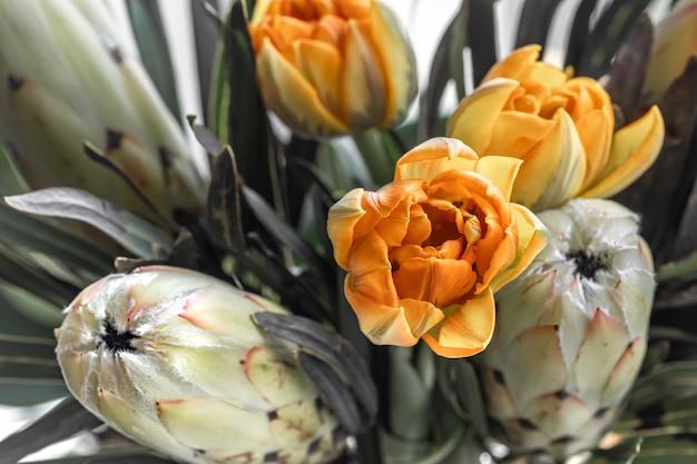 Um buquê de flores exóticas de protea real e tulipas brilhantes. plantas tropicais na composição florística.