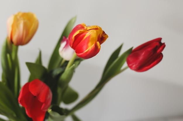 Um buquê de lindas tulipas amarelas e vermelhas em close-up