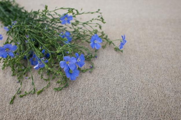 Um buquê de linho azul