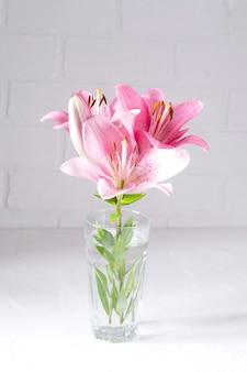 Um buquê de lírios rosa luz sobre fundo branco.