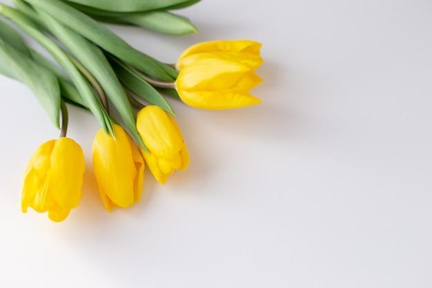 Um buquê de tulipas amarelas encontra-se no canto superior esquerdo em um fundo branco. vista superior. fechar-se. copiar spase