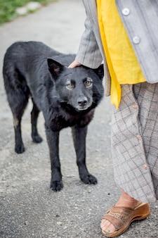 Um cachorro preto vadio na rua da cidade se aproximou de uma senhora idosa