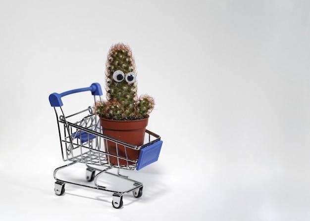 Um cacto verde com olhos colados em um vaso marrom isolado em um fundo branco cacto em um carrinho de compras em miniatura