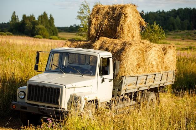 Um caminhão na natureza carregado com fardos de feno. moldura horizontal