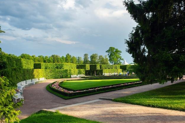 Um caminho em uma área verde de parque de verão com arbustos bem aparados