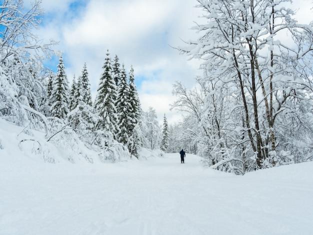 Um caminho nevado no norte da noruega