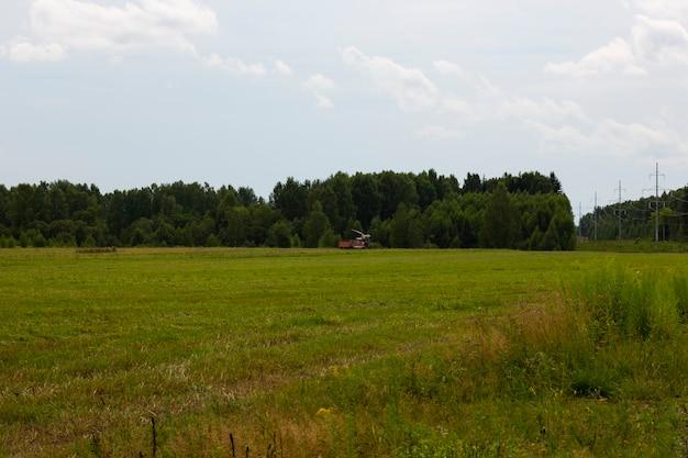 Um campo em agosto, um trator agrícola é visível à distância
