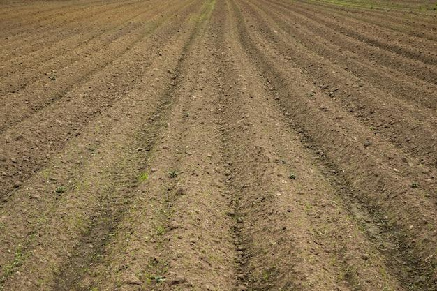 Um campo marrom com linhas aradas de sujeira
