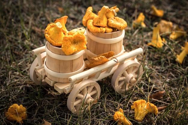 Um carrinho de madeira com cogumelos frescos, comida vegetariana