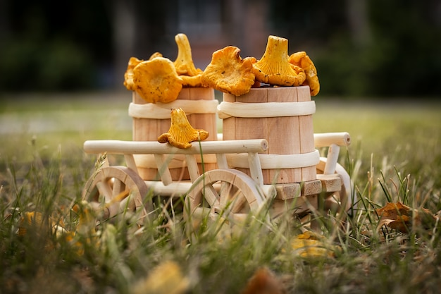 Um carrinho de madeira com cogumelos frescos