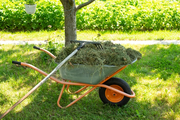 Um carrinho de mão de jardim fica no quintal de uma fazenda. ferramentas adicionais próximas.