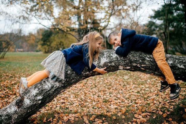 Um casal de crianças na árvore