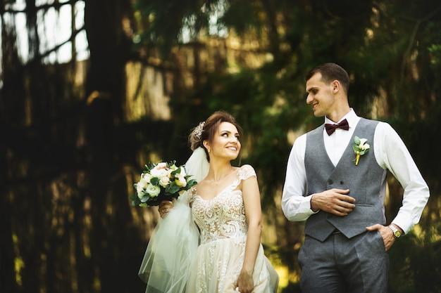 Um casal de noivos gosta de caminhar na floresta. recém-casados abraçam e dão as mãos
