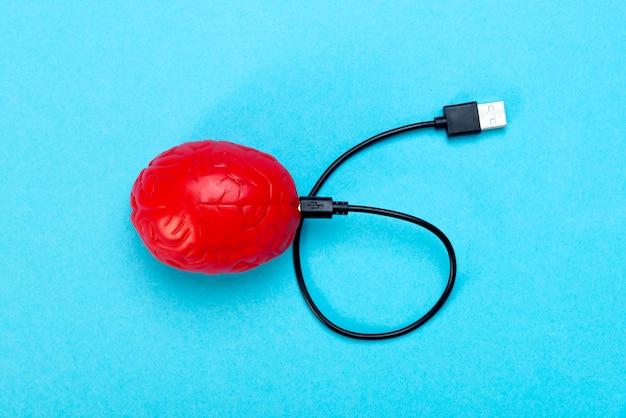 Um cérebro vermelho sobre um fundo azul e um cabo usb conectado a ele.