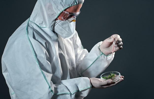 Um cientista em um traje de proteção detém e examina amostras com plantas isoladas em preto.