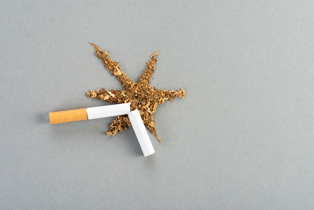 Um cigarro quebrado com tabaco, o tabaco se espalha sobre a mesa cinza em forma de explosão