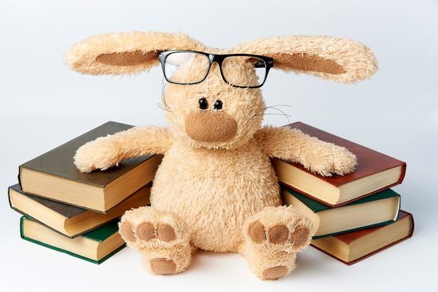 Um coelho de brinquedo em copos senta-se perto de pilhas de livros.