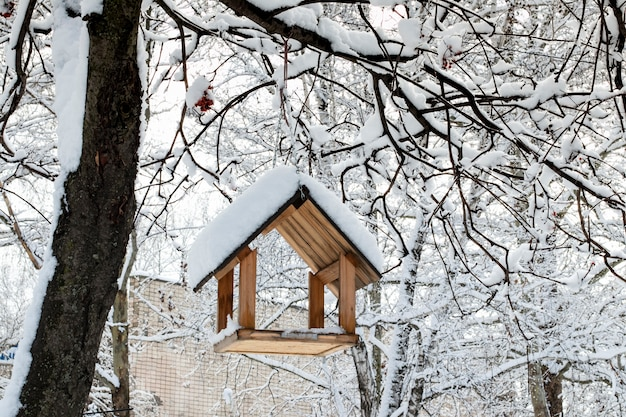 Um comedouro de pássaros em uma árvore sob a neve no inverno