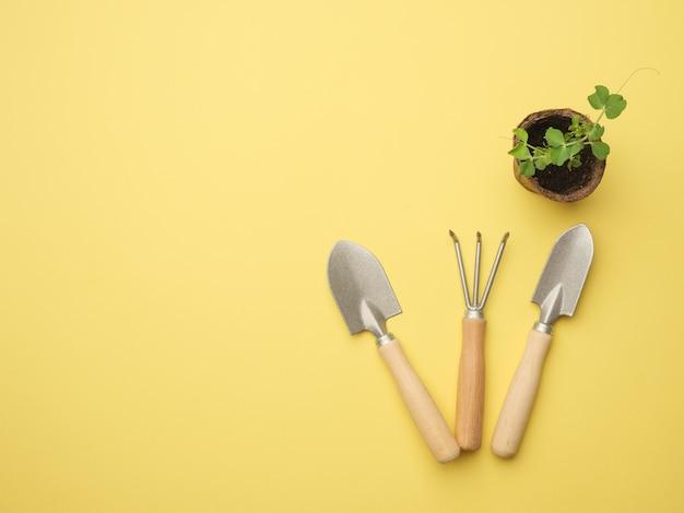Um conjunto de ferramentas de jardinagem em uma parede amarela com uma planta em um vaso. vista de cima. lugar para o seu texto. copie o espaço.