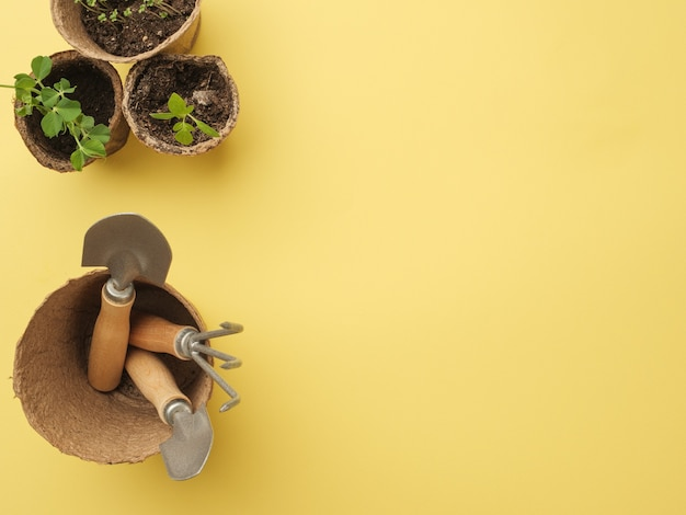 Um conjunto de ferramentas de jardinagem em uma parede amarela com uma planta em um vaso. vista de cima. lugar para o seu texto