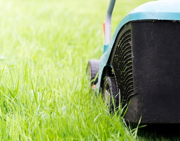 Um cortador de grama elétrico corta a grama verde jovem