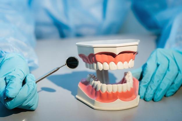 Um dentista usando luvas azuis e máscara segura um modelo dentário das mandíbulas superior e inferior e um espelho dental.