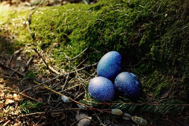 Um enredo de conto de fadas sobre o tema da páscoa, três ovos de dragão repousam em um velho cânhamo musgoso na floresta.