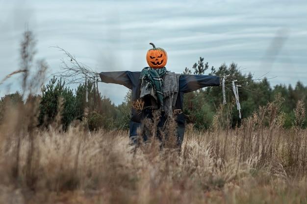 Um espantalho assustador com uma cabeça de abóbora de halloween em um campo em tempo nublado.