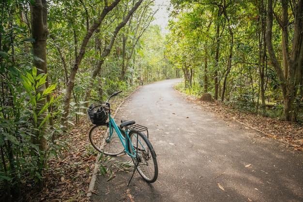 Um estacionamento da bicicleta na estrada vazia na floresta.