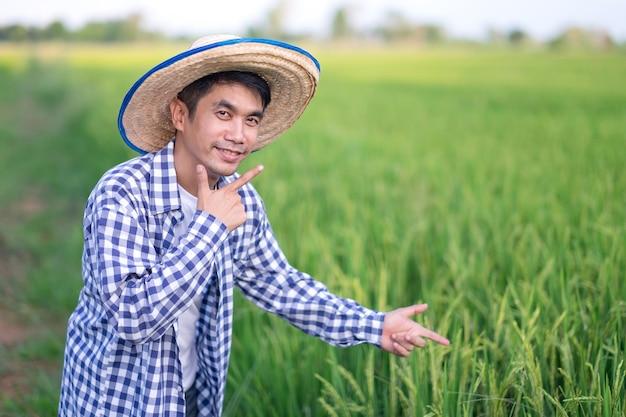 Um fazendeiro asiático posa orgulhosamente para uma foto com um campo de arroz verde e apontando o dedo para o campo de arroz.