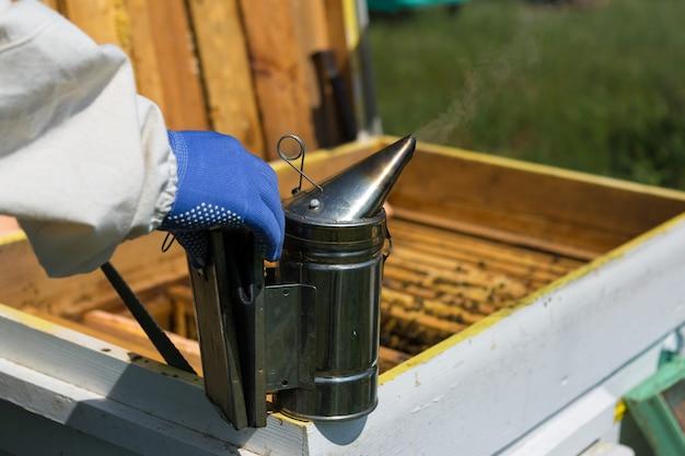Um fazendeiro em um apiário apiário segura armações com favos de mel de cera