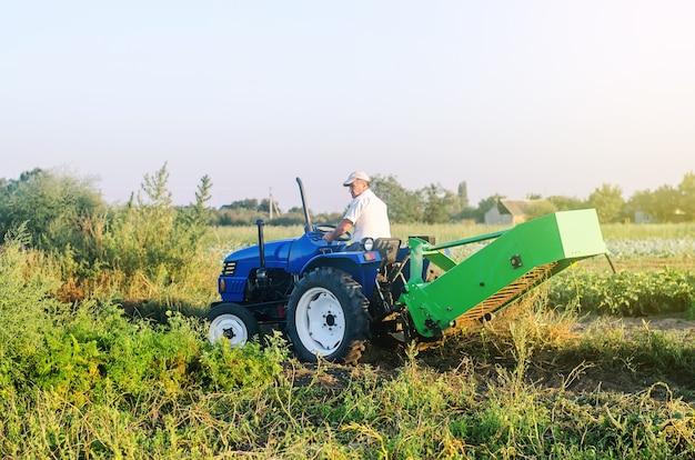 Um fazendeiro em um trator atravessa o campo agrícola. campanha de colheita de batata. fazenda, agricultura