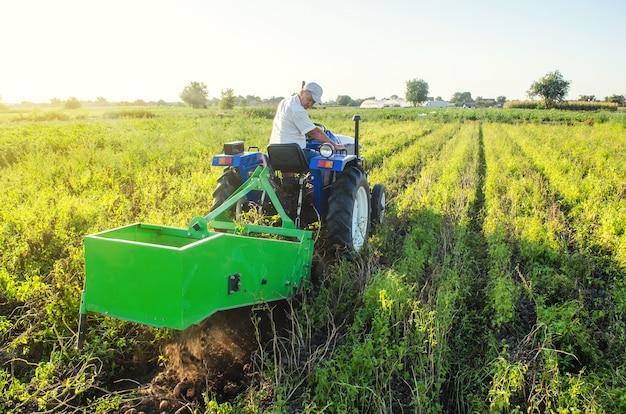 Um fazendeiro em um trator atravessa o campo e cava batatas. agricultura e terras agrícolas