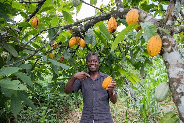 Um fazendeiro satisfeito em sua plantação de cacau.