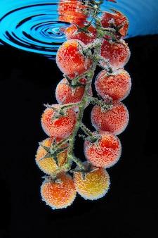 Um galho com tomate cereja vermelho com folhas verdes cobertas com bolhas de gás de água mineral, uma gota de água caindo e círculos acima deles. fundo preto