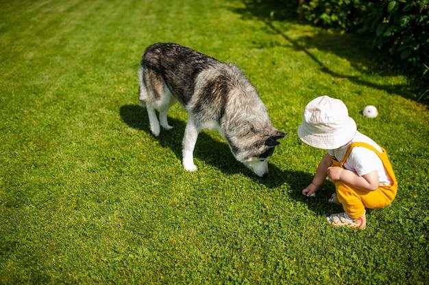 Um garotinho brincando com o cachorro no jardim