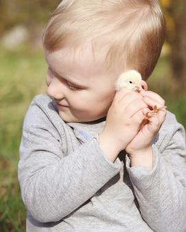 Um garotinho brincando com uma galinha fofa jovem