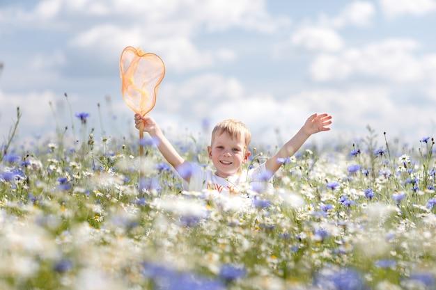Um garotinho caminha no campo de camomila