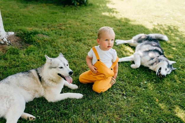 Um garotinho posando com dois cachorros na grama